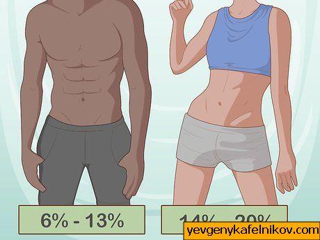 Piima roll rasvakahjustuses