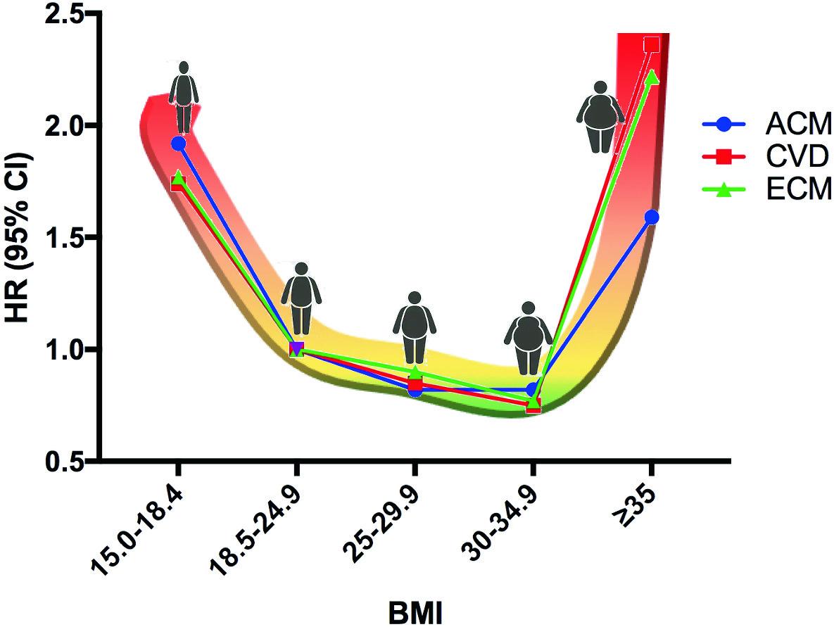 Kaalulangus madala BMI-ga
