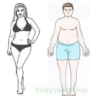 Realistlik rasva kadu kuus Kaalulangus ei soo riisi