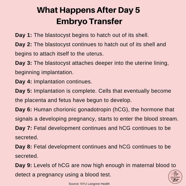 Kaalulangus HCG minu lahedal Liha kaalulanguse loikamine