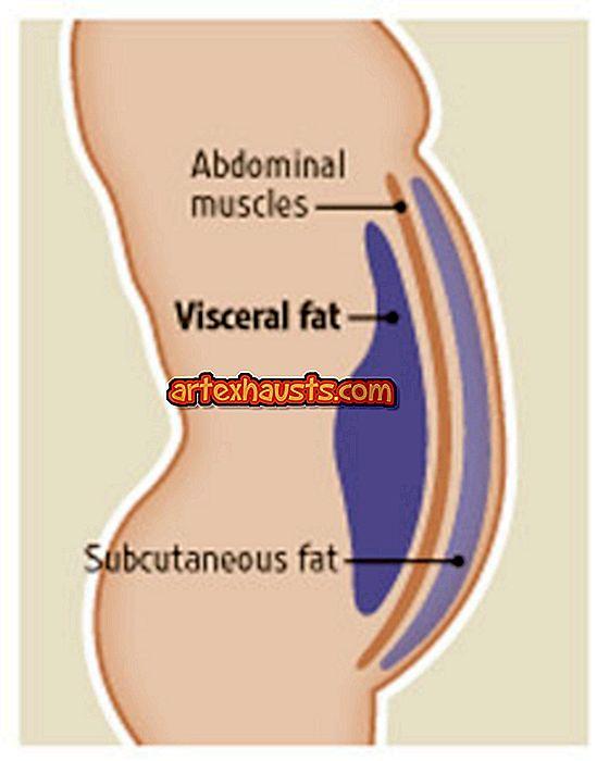 Kuidas rasva poleb keha