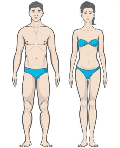 Kuidas aru saada keha rasva protsendimaara kaotuse