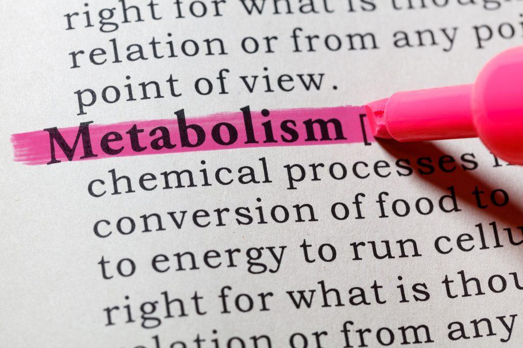 Metabolismi rasva kadu optimeerimine Kaalulangus valjakutse Rochester NY