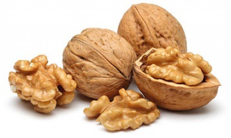 Kas kookospahklioli puruneb rasva