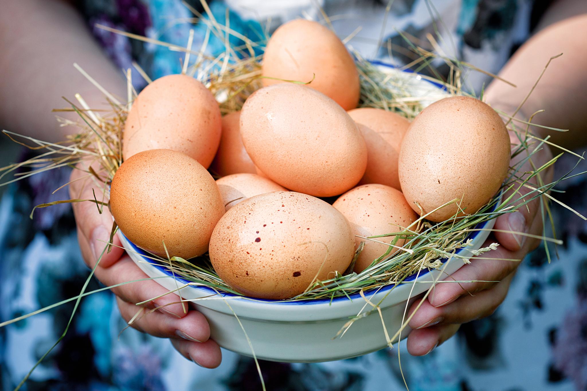 Kogu munade kaalulangus soomine