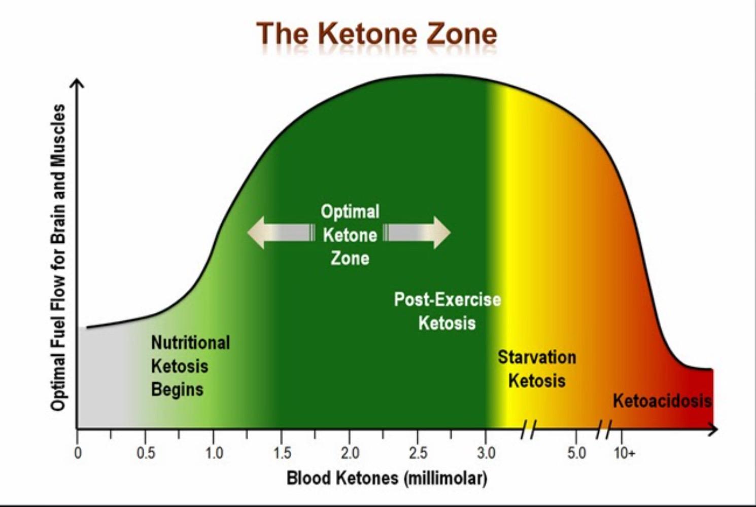 Kas ketoonid uriinis tahendab rasva poletamist