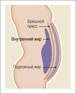 Kui kiiresti keha poleb rasva k slimming