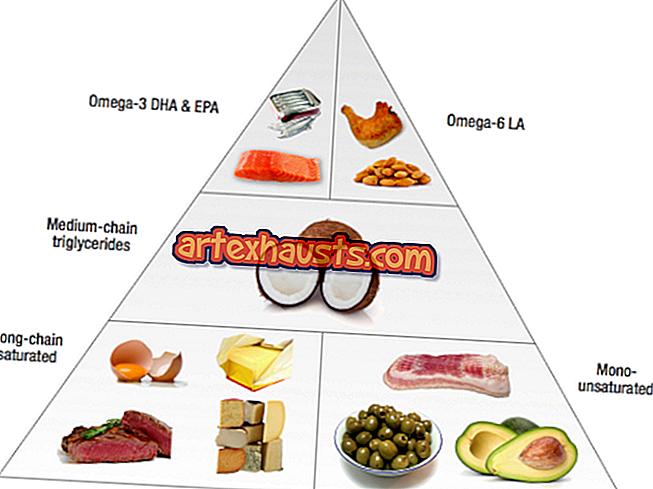 Mis toiduained keha rasva lagunevad Rasv maksa ja kaalulangus