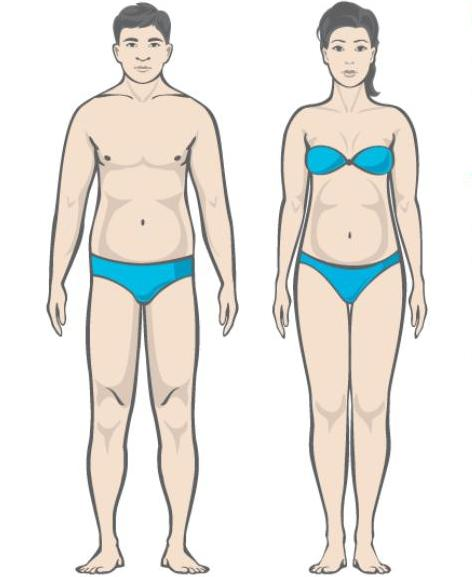 Asjad, mis polevad rasva kiiresti Kaalulangus ei ole 3 paeva jooksul