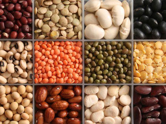 Mis toitu poleb loomulikult rasva 26 Kaalulanguse napunaited