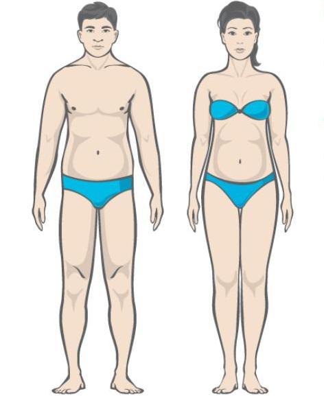 Jennifer Body Slim