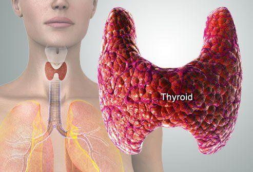 Kaalulangus toiduainete suua ja valtida Tummy kaalulangus toidud
